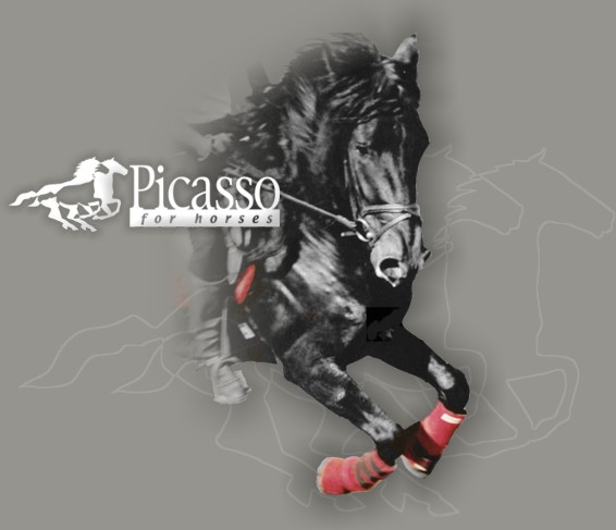 products picasso logo 1